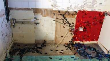 'The last song I sang to her', 2014. Site specific installation. Resin mice and audio